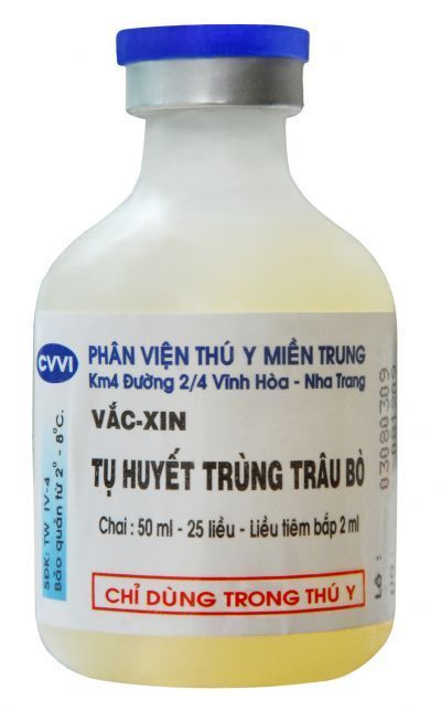 Vắc xin tụ huyết trùng