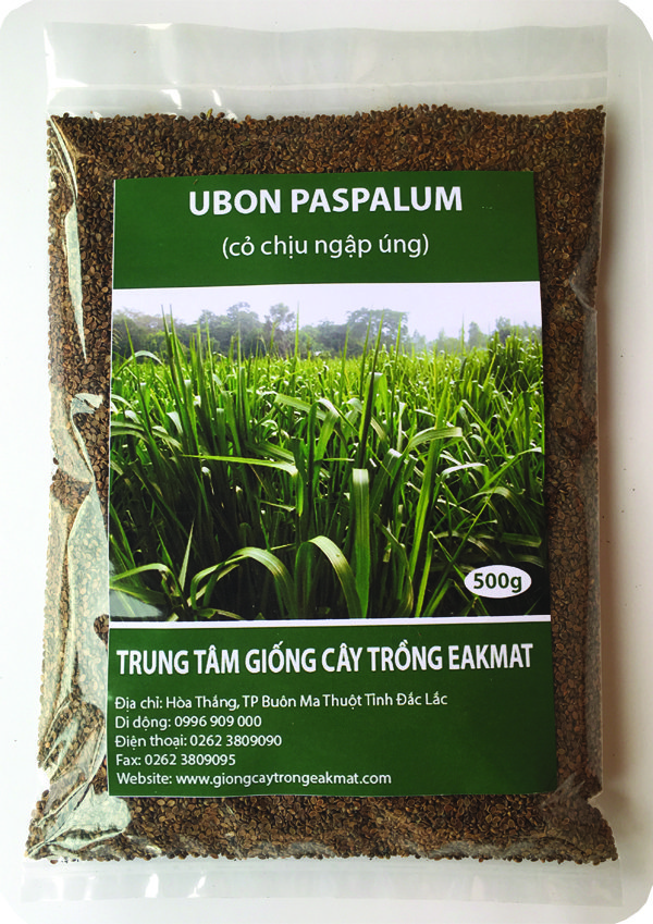 Bao bì giống cỏ Paspalum