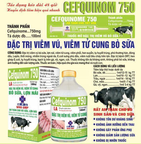 CEFQUINOM 750 đặc trị viêm vú ở bò sữa