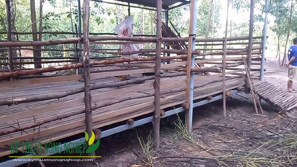 cách làm chuồng trại nuôi dê