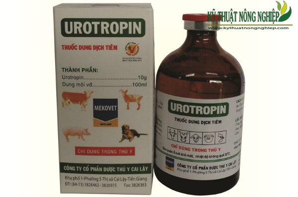 thuốc Urotropin 10%