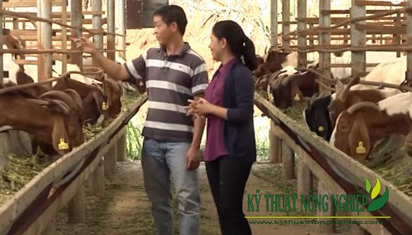 Phạm Văn Hưng tại xã Gia Hiệp, huyện Di Linh, tỉnh Lâm Đồng